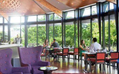 Best Cafés in Rotorua