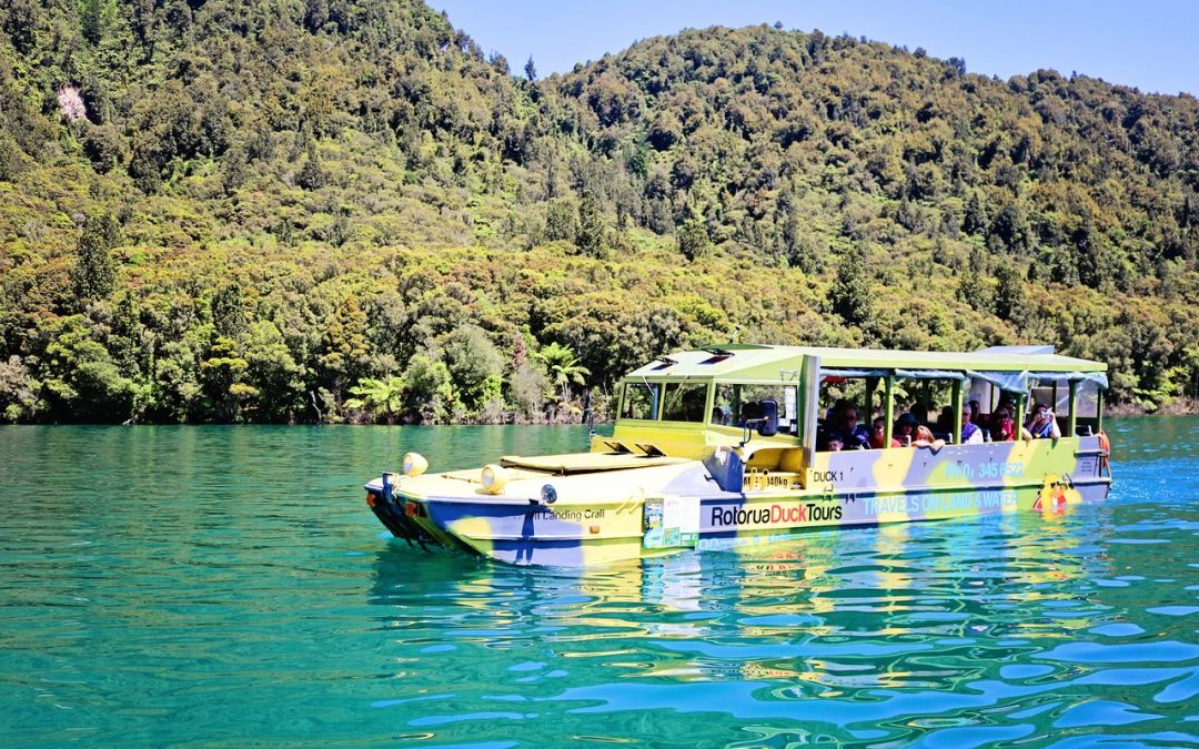 Top Places to See in Rotorua